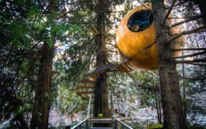 Free-Spirit-Spheres-Canada